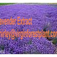 Large picture Lavender Extract