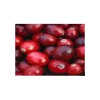 Large picture Cranberry P.E.