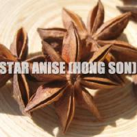 Large picture Viet Nam star aniseed