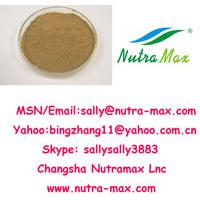 Large picture Ginkgo Biloba Extract 24%/6%/<1ppm