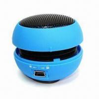 Large picture mini speaker