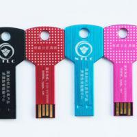 Large picture Key USB for LOGO Printed