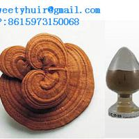 Large picture Reishi Mushroom P.E  sweetyhuir(at)hotmail(dot)com