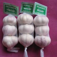 Large picture Chinese fresh garlic