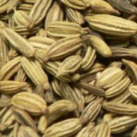 Large picture Fennel seed extract