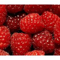 Large picture red raspberry powde