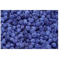 Large picture iqf wild blueberry