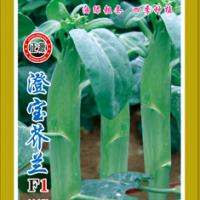 Large picture Chinese Kale Seed
