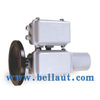 Large picture Electric actuator