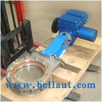 Large picture Electric control gate valve