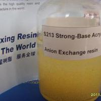 Large picture Strong-Base Acrylic Anion Exchange resin