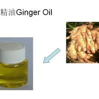 Large picture Ginger Essential Oil
