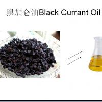 Large picture Black Pepper Oil By SFE-CO2
