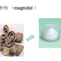 Large picture magnolia bark extract 50%-98% by SFE-CO2