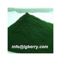 Large picture Spirulina Extract