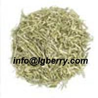 Large picture Oat Grass Extract