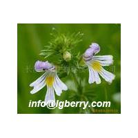 Large picture Eyebright Extract