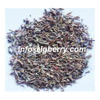 Large picture Erigeron breviscapus Extract