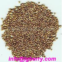 Large picture Coriander Seed Extract