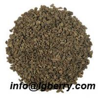 Large picture Celery Seed Extract