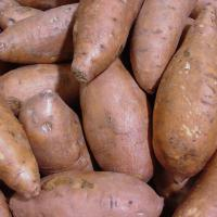 Large picture Sweet Potatoes