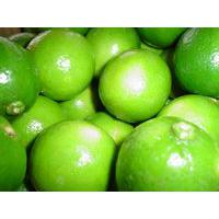 Large picture Fresh lime
