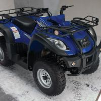 Large picture 250cc Utility ATV