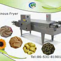 Large picture Continuous Fryer