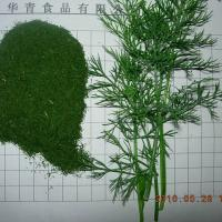 Large picture dried dill