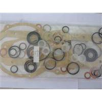 Large picture diesel engine parts-cam disk,feed pump,repair kit
