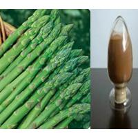 Large picture High purity Asparagus saponins-No dextrin