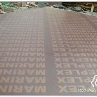 Large picture Marineplex Film Faced Plywood