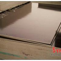 Large picture China Film Faced Plywood