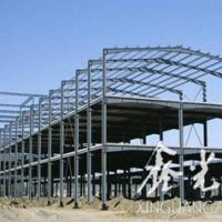 Large picture steel commercial building