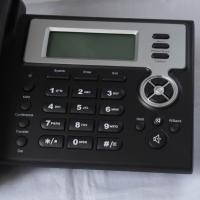 Large picture voip phone with IAX2