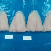 Large picture FROZEN PANGASIUS WELL TRIMMED FILLET