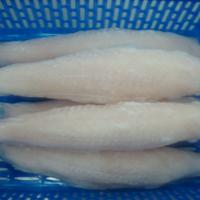 Large picture FROZEN PANGASIUS WELL TRIMMED FILLET, ROLL IN HALF