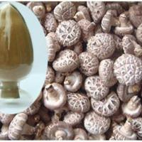 Large picture High purity lentinus edodes extract-No dextrin