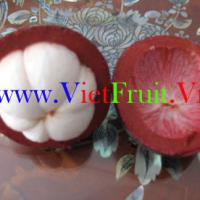 Large picture fresh mangosteen