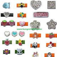 Large picture slider charms,rhinestone charms,dog charms