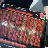 Large picture strawberry