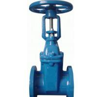 Large picture rising stem gate valve BS5163