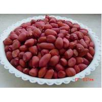 Large picture chinese silihong peanut kernels