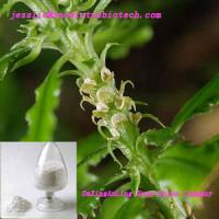 Large picture Huperzia Serrate extract(Huperzine A)