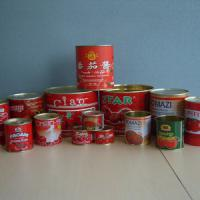 Large picture canned tomato paste