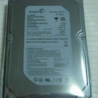 Large picture ST or WD 160GB IDE Hard Disk original