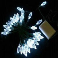 Large picture LED String Lights with 3 x AA Battery