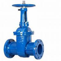 Large picture DIN CAST IRON F5 RISING STEM GATE VALVE