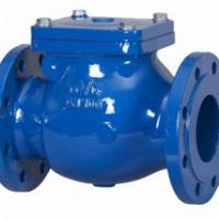 Large picture DIN CAST IRON F6 SWING CHECK VALVE