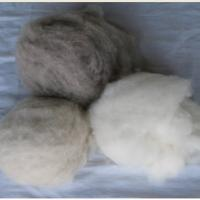 Large picture 100% dehaired cashmere fibre Inquire now
